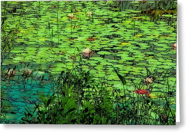 Surreal Landscape Greeting Cards - Lily Pads - An Abstract Greeting Card by David Patterson