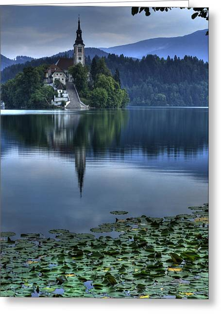Bled Greeting Cards - Lily Pads at Lake Bled Greeting Card by Don Wolf