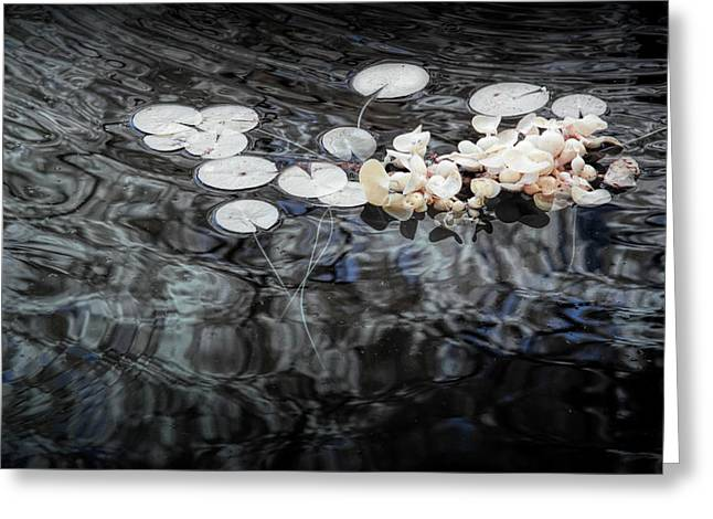 Lily Pads In Infrared Greeting Card by Randall Nyhof