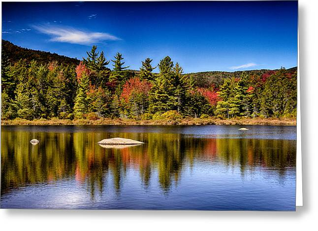 Grey Clouds Greeting Cards - Lily Pond Greeting Card by Tricia Marchlik
