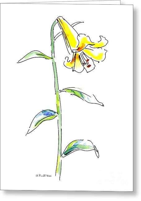 Calla Lily Greeting Cards - Lily Watercolor Painting 2 Greeting Card by Gordon Punt