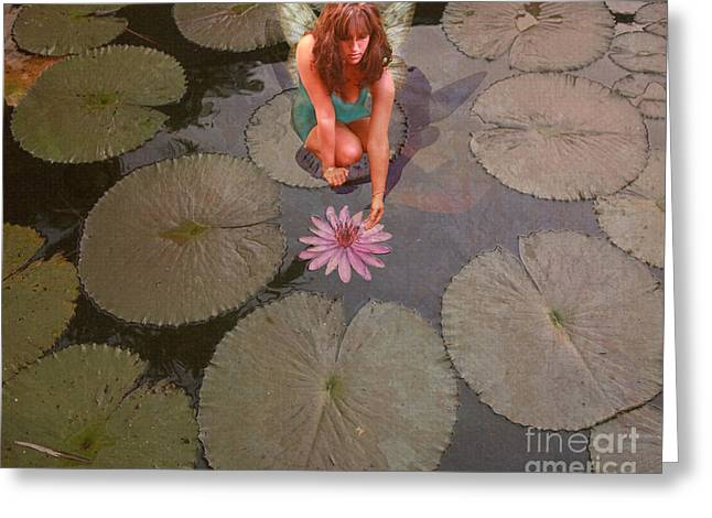 Magickal Greeting Cards - Lilypad Fairy Greeting Card by Patricia Ridlon