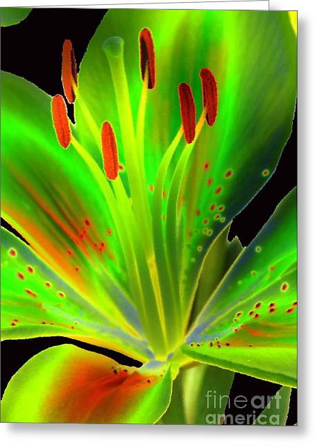 Berry Greeting Cards - Lime Twist Greeting Card by Diane E Berry