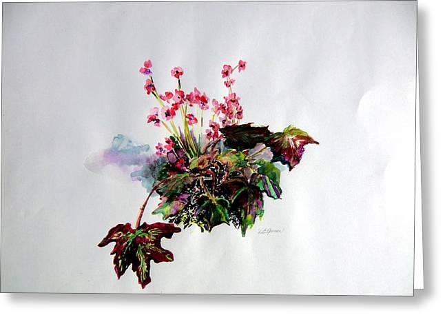Watercolor! Drawings Greeting Cards - Linda Begonia Greeting Card by Mindy Newman