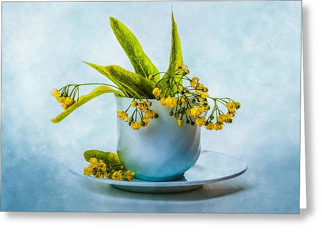 Medical Greeting Cards - Linden tree flowers in a teacup Greeting Card by Alexander Senin