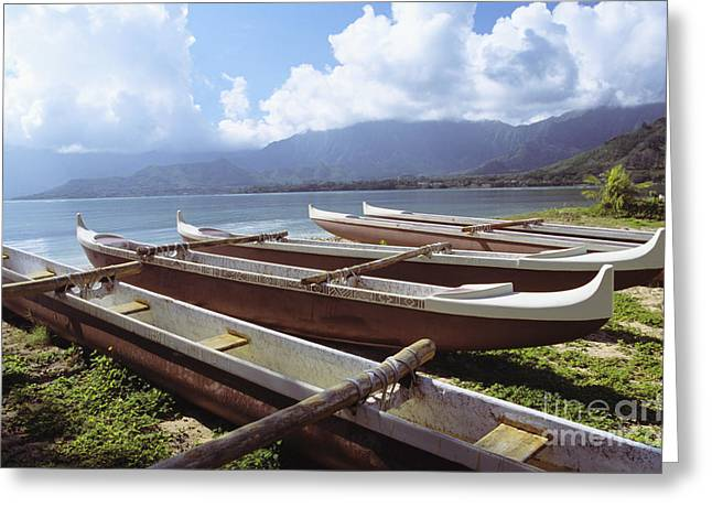 Line Of Outrigger Canoes Greeting Card by Joss - Printscapes
