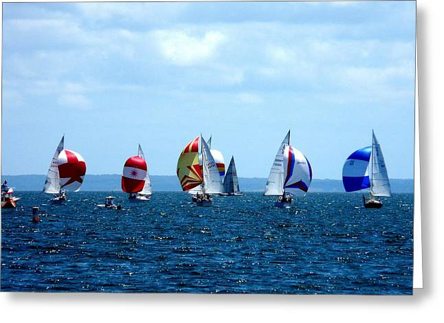 Sailboat Greeting Cards - Line Up Greeting Card by Kendall Eutemey