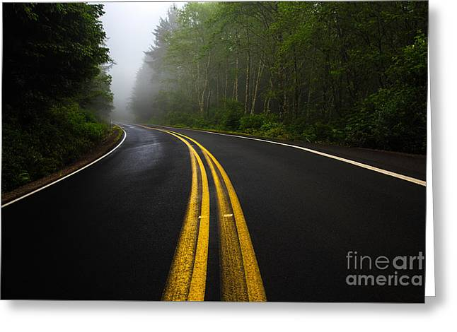 Scenic Greeting Cards - Lines Curving Into Misty Forest Greeting Card by Jon Olmstead
