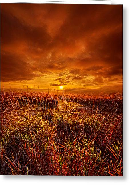 Shadows Greeting Cards - Lingering Greeting Card by Phil Koch