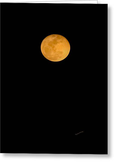 Harvest Moon Greeting Cards - Linten Moon Greeting Card by DigiArt Diaries by Vicky B Fuller