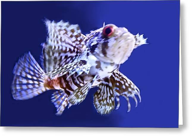 Sea Lions Greeting Cards - Lion Fish Greeting Card by Sheela Ajith