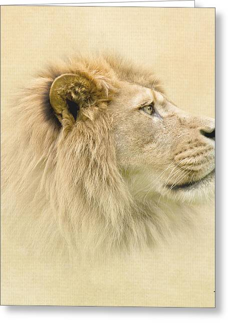 Lions Greeting Cards - Lion II Greeting Card by Roy  McPeak