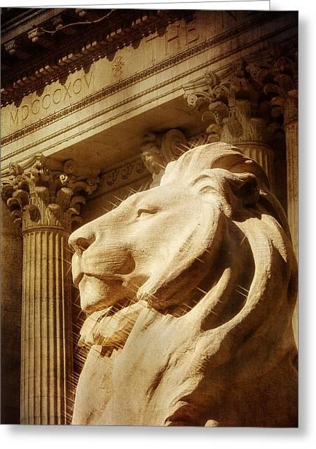 Lion In The Sun Greeting Card by Jon Woodhams