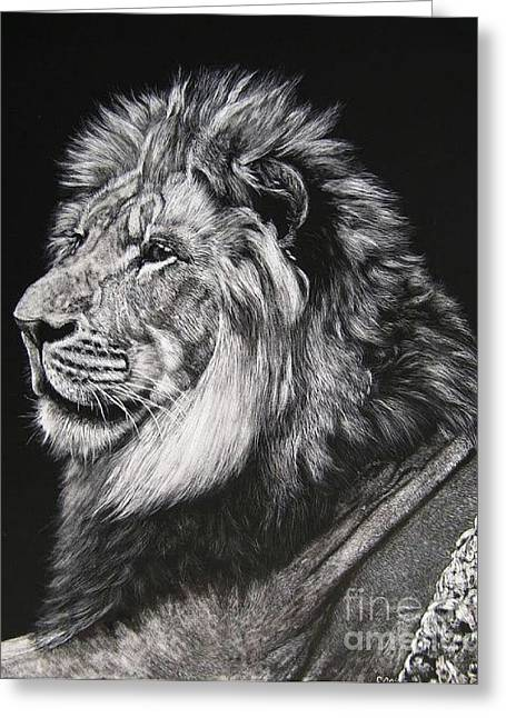 Lioness Drawings Greeting Cards - Lion King Greeting Card by Sabine Lackner