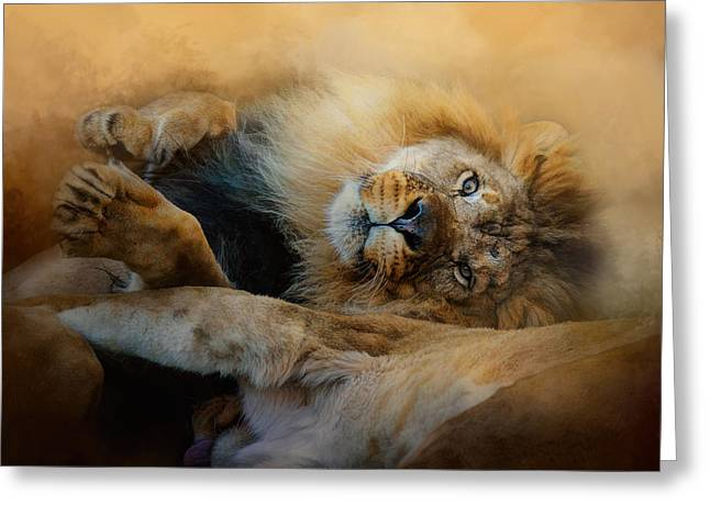 Wildcats Greeting Cards - Lion Love 2 Greeting Card by Jai Johnson