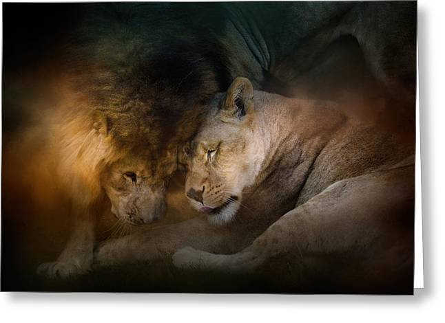Lions Greeting Cards - Lion Love Greeting Card by Jai Johnson