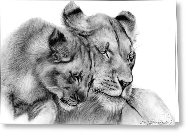 Lioness Drawings Greeting Cards - Lioness and Cub Greeting Card by Danguole Serstinskaja