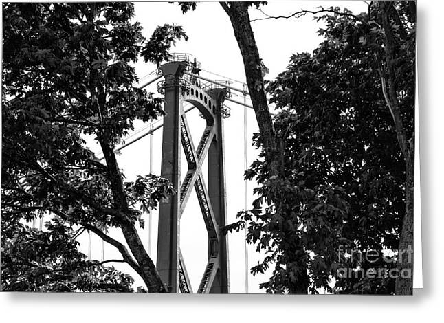 Burrard Inlet Greeting Cards - Lions Gate Between the Trees mono Greeting Card by John Rizzuto