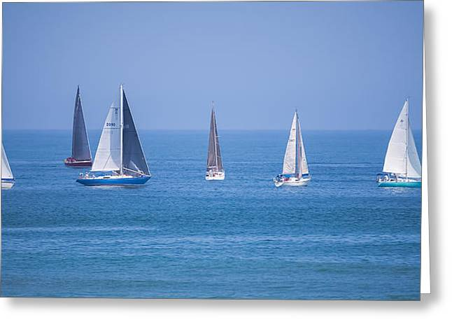 Recently Sold -  - Ocean Panorama Greeting Cards - Lipton Cup Greeting Card by Ann Flugge