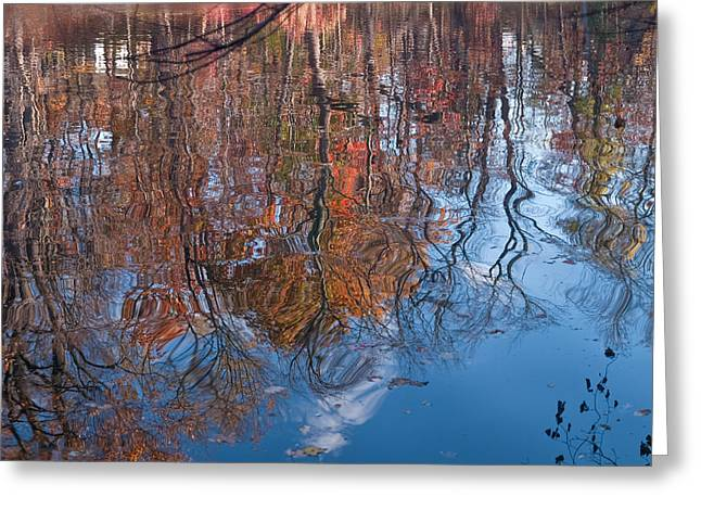 Distortion Greeting Cards - Liquid Autumn Greeting Card by Jim DeLillo