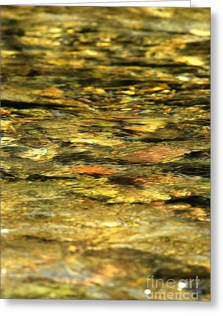 North Fork Greeting Cards - Liquid Gold Greeting Card by Adam Jewell