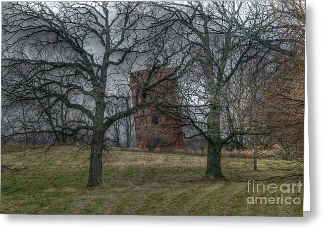 Illinois Barns Greeting Cards - Listing to port Greeting Card by David Bearden