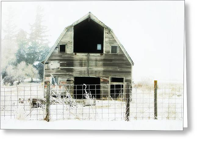 Little Barn Greeting Card by Julie Hamilton