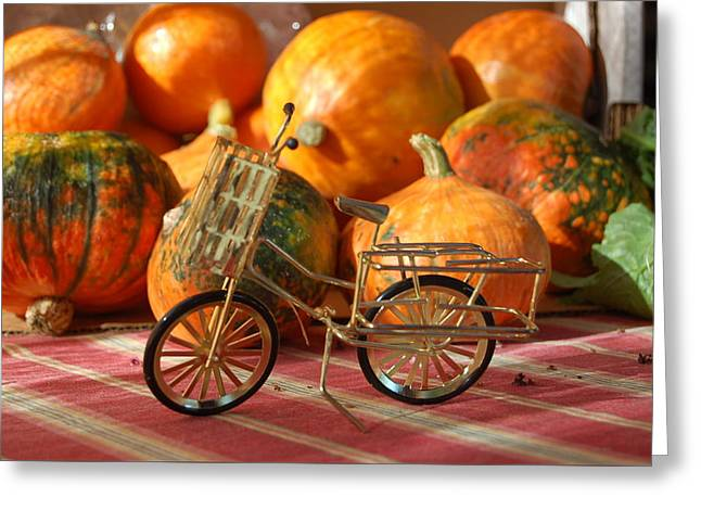 Farm Stand Greeting Cards - Little Bike Greeting Card by Jennifer Smith