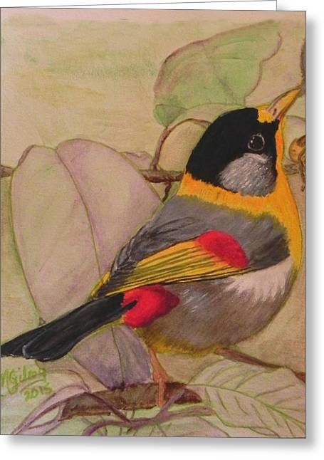 Melbourne Beach Greeting Cards - Little Bird Greeting Card by MGilroy