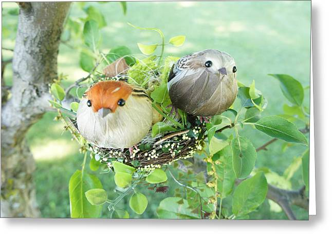 Nature Greeting Cards - Little Birds 4 Greeting Card by Sheela Ajith