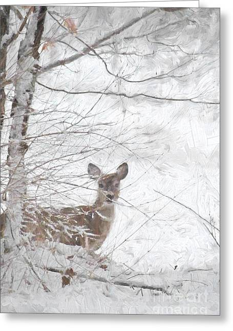 Little Doe In Snow Greeting Card by Benanne Stiens