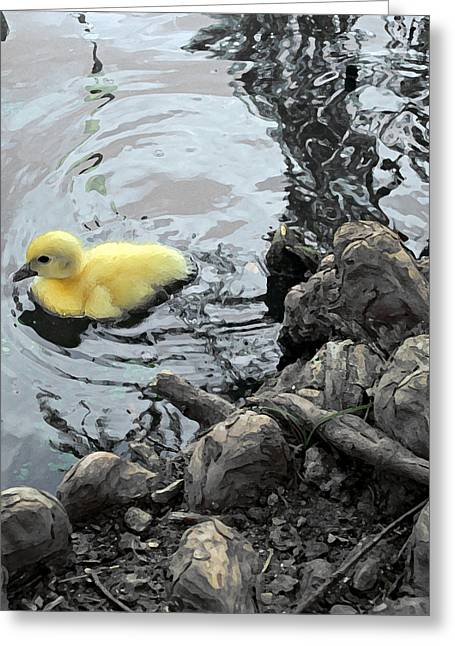 Little Ducky 2 Greeting Card by Angelina Vick