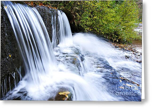 Rushing Stream Greeting Cards - Little Elbow Waterfall and Williams River Greeting Card by Thomas R Fletcher