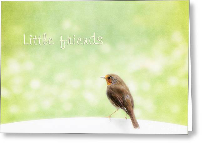 Robin Mixed Media Greeting Cards - Little friends Greeting Card by Angela Doelling AD DESIGN Photo and PhotoArt