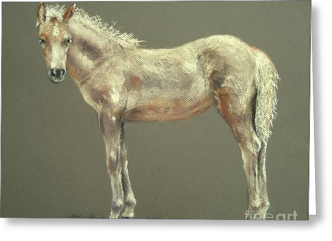 Pony Pastels Greeting Cards - Little Girl Greeting Card by Sabina Haas
