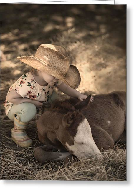 Little Horse Whisperer2 Greeting Card by Robin-lee Vieira