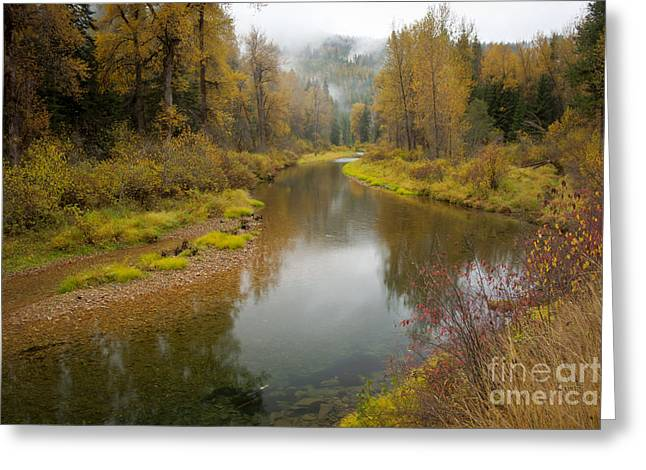 Little North Fork Greeting Card by Idaho Scenic Images Linda Lantzy