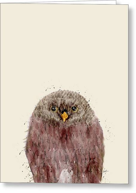 Colorful Owl Greeting Cards - Little Owl Greeting Card by Bri Buckley