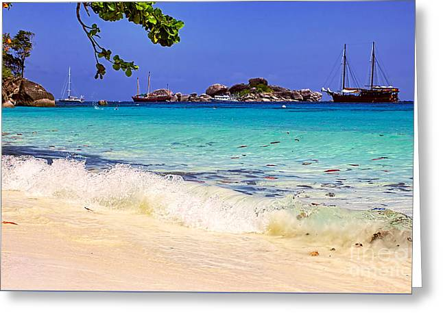 Little Paradise Greeting Card by Kaye Menner