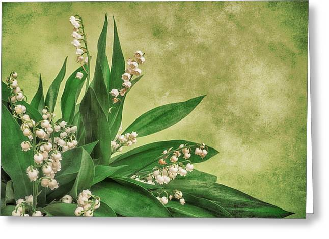 Floral Fine Art Photography Greeting Cards - Little Poison Greeting Card by Wim Lanclus