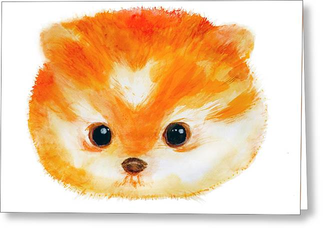 Toy Dog Greeting Cards - Little Pomeranian  Greeting Card by Ariel Sierra