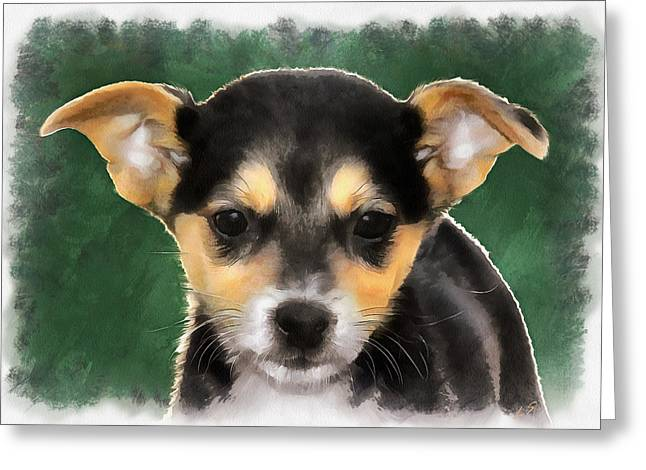 Guard Dog Greeting Cards - Little puppy Greeting Card by Sergey Lukashin