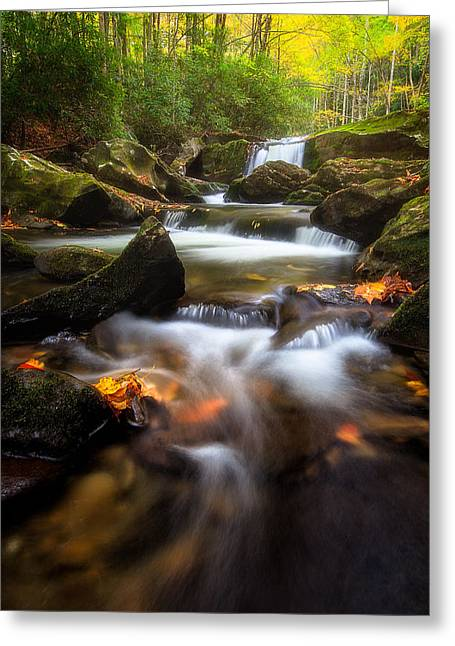 Tennessee River Greeting Cards - Little River in Autumn Greeting Card by Ken Koskela