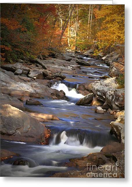 Purchase Greeting Cards - Little River Stream Greeting Card by Geraldine DeBoer