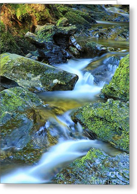 Babbling Greeting Cards - Little Stream Greeting Card by JM Braat Photography