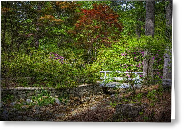 Wooden Building Greeting Cards - Little Stream Greeting Card by Marvin Spates