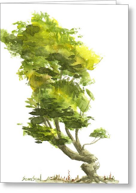 Asian Influence Greeting Cards - Little Tree 10 Greeting Card by Sean Seal