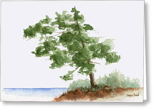 Sean Seal Greeting Cards - Little Tree 3 Greeting Card by Sean Seal