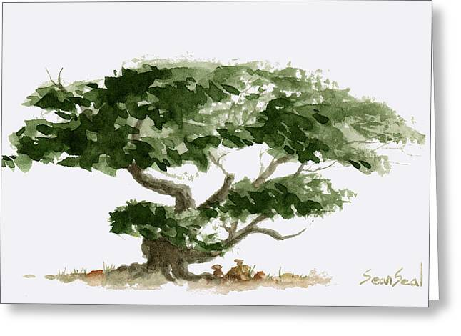 Sean Seal Greeting Cards - Little Tree 5 Greeting Card by Sean Seal