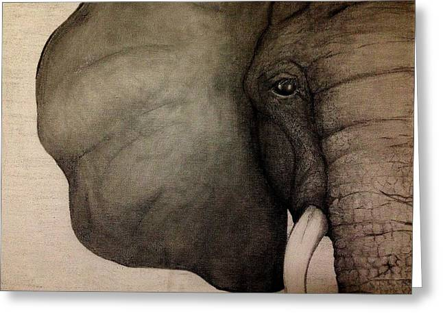 Wild Life Drawings Greeting Cards - Liv Greeting Card by M J